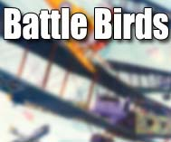 Battle Birds
