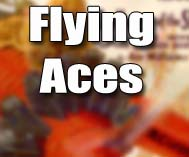 Fighting Aces