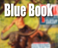 Blue Book Magazine