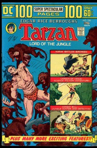 Tarzan - #230 - 04-05/74 - 6.0 - DC